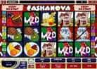 cashanova Videoslot in allen Casinos der MG Gruppe